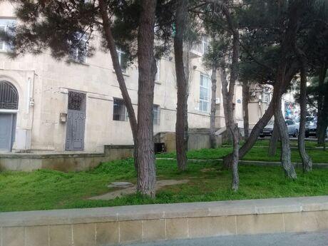Obyekt - Yasamal r. - 858 m²