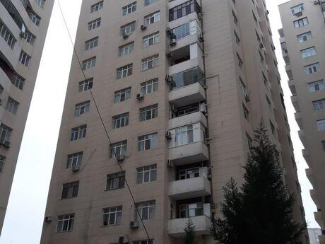 2-комн. офис - м. Низами - 89 м²