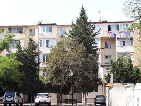 1 otaqlı köhnə tikili - Elmlər Akademiyası m. - 31 m²