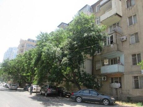 1 otaqlı köhnə tikili - Elmlər Akademiyası m. - 50 m²