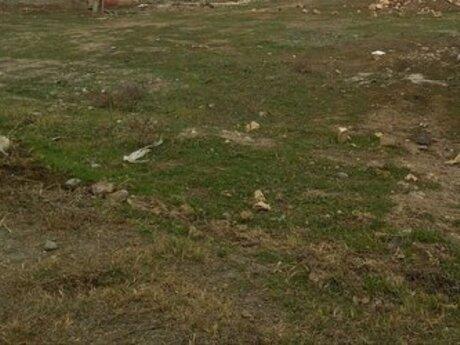Torpaq - Badamdar q. - 5.5 sot