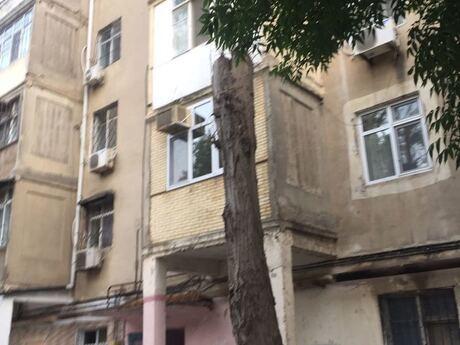 3-комн. вторичка - пос. Биладжары - 75 м²