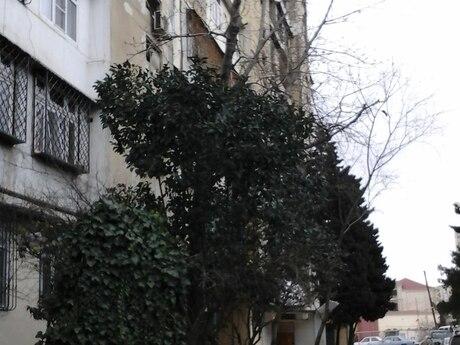 1 otaqlı köhnə tikili - Əhmədli q. - 45 m²