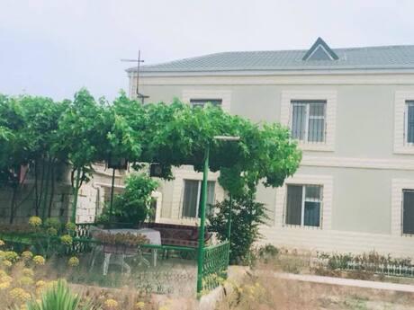 Bağ - Türkan q. - 235 m²