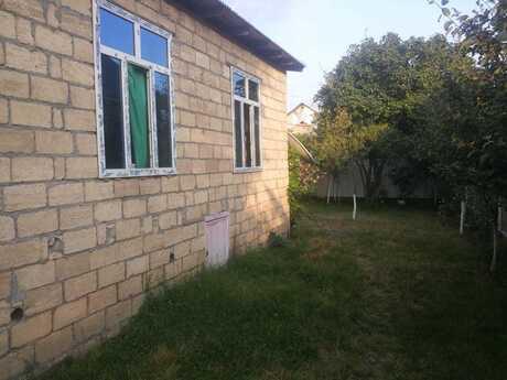 Bağ - Qəbələ - 100 m²