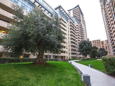 3 otaqlı yeni tikili - Səbail r. - 115 m²