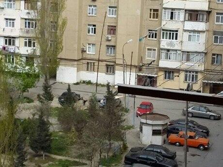5 otaqlı köhnə tikili - Həzi Aslanov q. - 89 m²