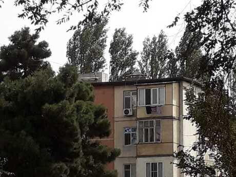 1 otaqlı köhnə tikili - Nəsimi m. - 29 m²