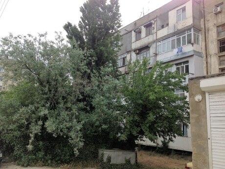 1 otaqlı köhnə tikili - Badamdar q. - 32 m²