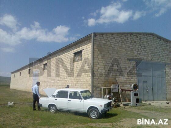 Obyekt - Tovuz - 813 m² (1)