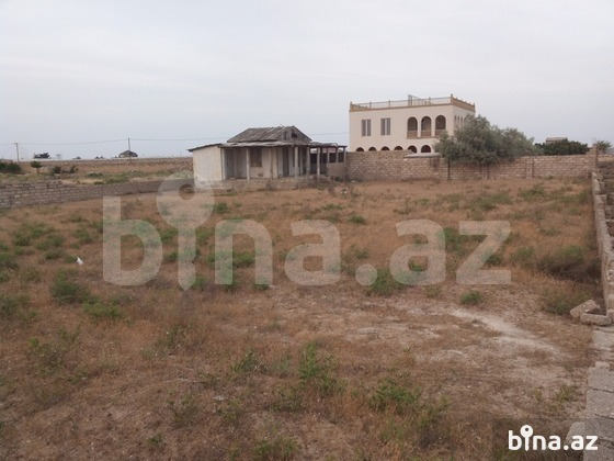 Bağ - Türkan q. - 1300 m² (1)