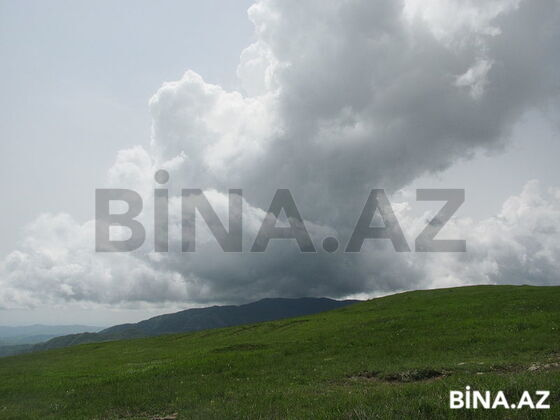 Torpaq - Şamaxı - 28 sot (1)