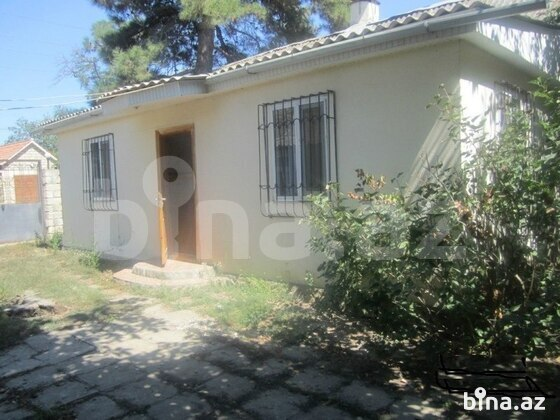 Bağ - Xaçmaz - 60 m² (1)
