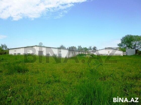 Obyekt - Xudat - 10000 m² (1)