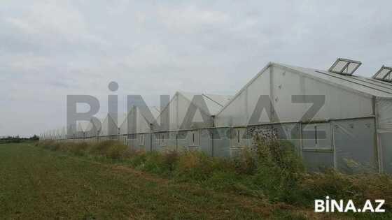 Obyekt - Salyan - 600 m² (1)