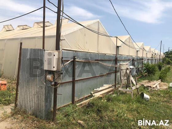 Obyekt - Salyan - 3000 m² (1)