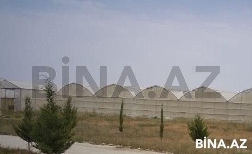 Obyekt - Qaradağ r. - 110000 m² (1)
