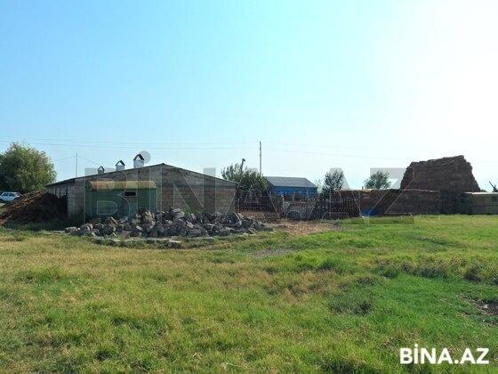 Obyekt - Yevlax - 130000 m² (1)