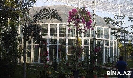 Obyekt - Maştağa q. - 300 m² (1)