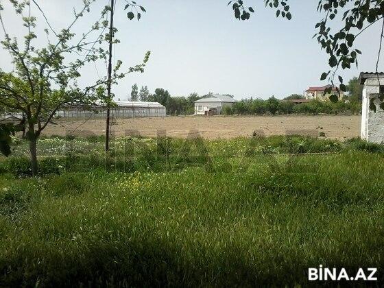 Torpaq - Salyan - 500 sot (1)