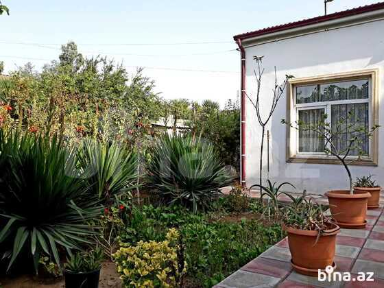 Bağ - Mərdəkan q. - 105 m² (1)