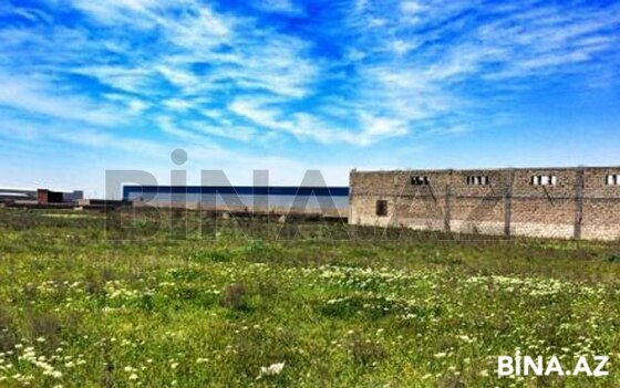 Torpaq - Neftçilər m. - 300 sot (1)