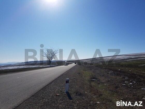 Torpaq - Şamaxı - 1700 sot (1)