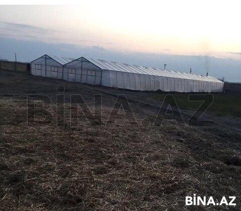 Torpaq - Hacıqabul - 1000 sot (1)