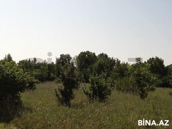 Torpaq - Qəbələ - 105 sot (1)