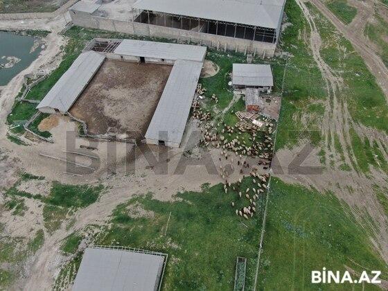 Obyekt - Novxanı q. - 3000 m² (1)
