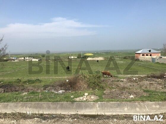 Torpaq - Şabran - 12 sot (1)