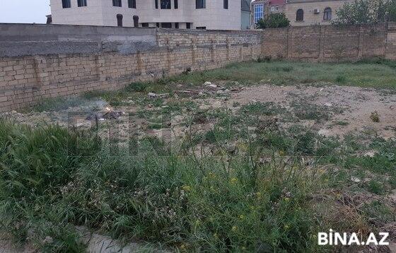 Torpaq - Badamdar q. - 8.4 sot (1)