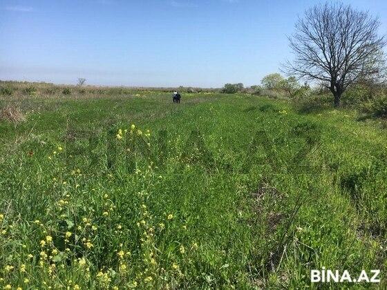 Torpaq - Xaçmaz - 280 sot (1)