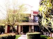 7 otaqlı ev / villa - Nərimanov r. - 800 m²
