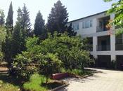 Bağ - Görədil q. - 1900 m²