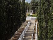 9 otaqlı ev / villa - Pirşağı q. - 300 m² (14)