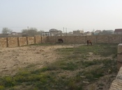 Torpaq - Nardaran q. - 12 sot