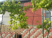 4 otaqlı ev / villa - Abşeron r. - 126 m² (6)