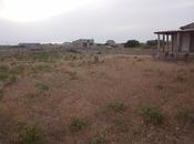 Bağ - Türkan q. - 1300 m² (3)