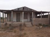 Bağ - Türkan q. - 1300 m² (4)