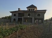 Bağ - Sabunçu q. - 1200 m² (4)