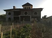 Bağ - Sabunçu q. - 1200 m² (6)