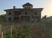 Bağ - Sabunçu q. - 1200 m² (2)