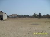 8 otaqlı ev / villa - Novxanı q. - 700 m² (17)