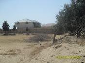 8 otaqlı ev / villa - Novxanı q. - 700 m² (40)