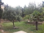 7 otaqlı ev / villa - Badamdar q. - 380 m² (12)