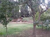 7 otaqlı ev / villa - Badamdar q. - 380 m² (16)