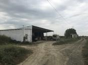 Obyekt - Salyan - 110000 m²