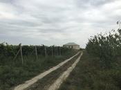 Obyekt - Salyan - 110000 m² (8)