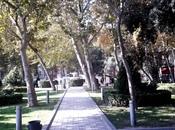 6 otaqlı köhnə tikili - İçəri Şəhər m. - 291 m² (30)